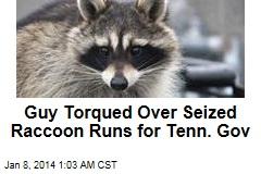 Guy Torqued Over Seized Raccoon Runs for Tenn. Gov
