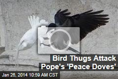 Pope's 'Peace Doves' Immediately Attacked