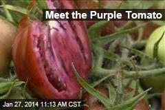 Meet the Purple Tomato