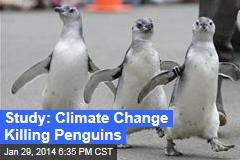 Study: Climate Change Killing Penguins