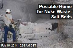 Possible Home for Nuke Waste: Salt Beds