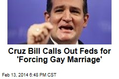 Cruz Bill Calls Out Feds for 'Forcing Gay Marriage'