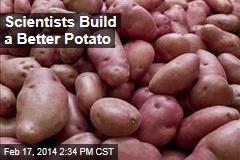 Scientists Build a Better Potato