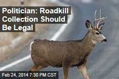Texas Politician: Roadkill Makes for a Yummy Meal