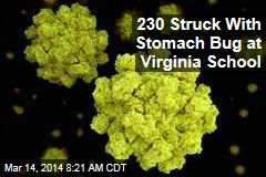 230 Struck With Stomach Bug at Virginia School
