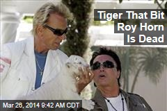 Tiger That Bit Roy Horn Is Dead