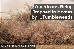 Americans Being Trapped in Homes by ...Tumbleweeds