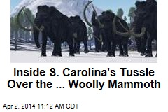 Inside S. Carolina's Tussle Over the ... Woolly Mammoth
