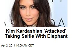 Kim Kardashian 'Attacked' Taking Selfie With Elephant