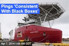Pings 'Consistent With Black Boxes'