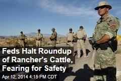 Feds Halt Roundup of Rancher's Cattle, Fearing for Safety