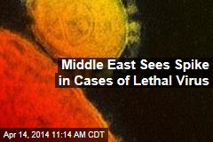 Middle East Sees Spike in Cases of Lethal Virus