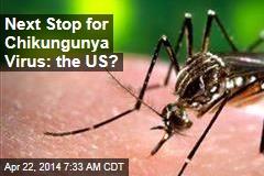 Tropical Chikungunya Virus Poised to Invade US