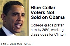 Blue-Collar Voters Not Sold on Obama