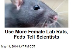 Feds to Scientists: Use More Female Lab Rats