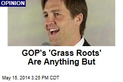 GOP's 'Grass Roots' Are Anything But