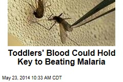 Toddlers' Blood Could Hold Key to Beating Malaria