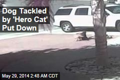 Dog Tackled by 'Hero Cat' Put Down