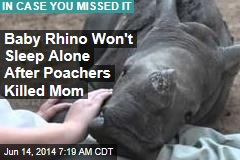 Baby Rhino Won't Sleep Alone After Poachers Killed Mom