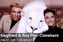 Siegfried & Roy Plan Comeback