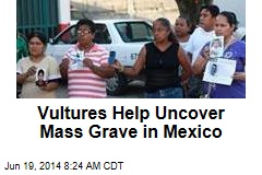 Vultures Help Uncover Mass Grave in Mexico