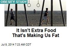It Isn't Extra Food That's Making Us Fat