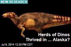 Herds of Dinos Thrived in ... Alaska?