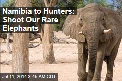 Namibia to Hunters: Shoot Our Rare Elephants