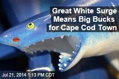 Great White Surge Means Big Bucks for Cape Cod Town