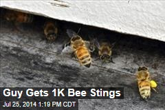 Guy Gets 1K Bee Stings