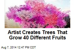 Artist Creates Trees That Grow 40 Different Fruits