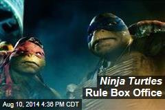Ninja Turtles Rule Box Office