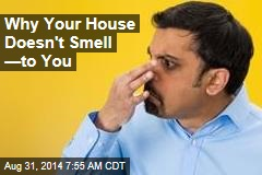 Why Your House Doesn't Smell —to You