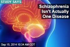 Schizophrenia Isn't Actually One Disease