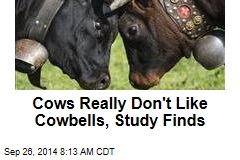 Cows Really Don't Like Cowbells, Study Finds