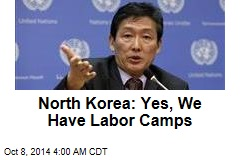 North Korea: Yes, We Have Labor Camps