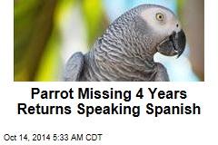 Brit's Missing Parrot Returns Speaking Spanish