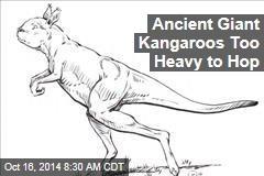 Ancient Giant Kangaroos Too Heavy to Hop