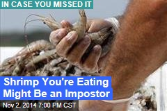 Shrimp You're Eating Might Be an Impostor