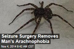 Seizure Surgery Removes Man's Arachnophobia