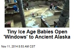 Tiny Ice Age Babies Open 'Windows' to Ancient Alaska