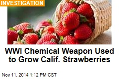 WWI Chemical Weapon Used to Grow Calif. Strawberries