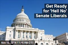 Get Ready for 'Hell No' Senate Liberals