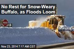 No Rest for Snow-Weary Buffalo, as Floods Loom