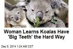 Koala Savages Woman Walking Dogs