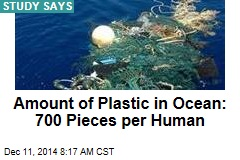 Amount of Plastic in Ocean: 700 Pieces per Human