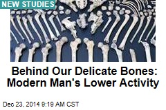 Behind Our Delicate Bones: Modern Man's Lower Activity