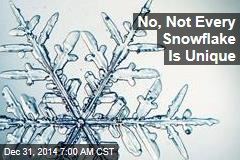 No, Not Every Snowflake Is Unique
