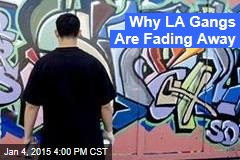 Why LA Gangs Are Fading Away