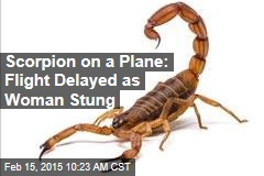 Scorpion on a Plane: Flight Delayed as Woman Stung